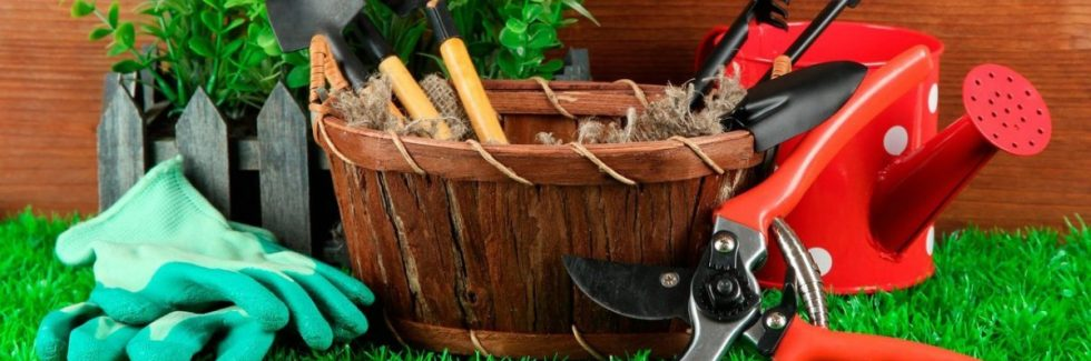 Which Gardening Tools to Have in Your Garden Storage Shed