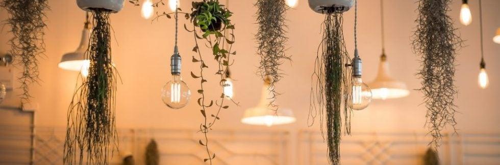 Best Lighting Trends to Incorporate in Your Garden House
