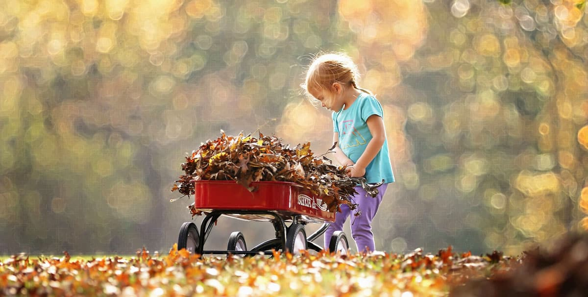 How to Prepare Your Garden House for Autumn
